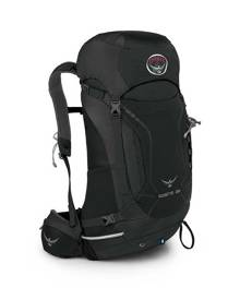 Osprey Kestrel 28L Hiking Backpack - Ash Grey